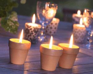 bougies-citronelles