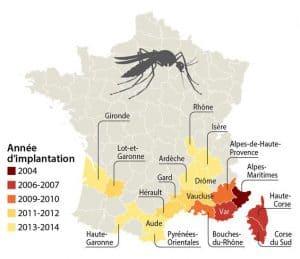 moustiques-tigre-18-departements